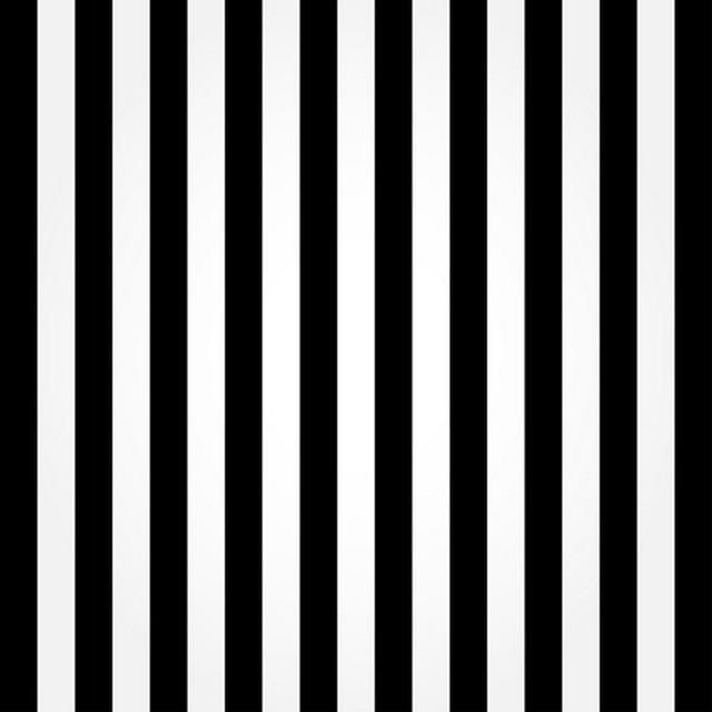 Zeer Huayi zwart wit strepen fotografie art stof achtergrond fotografie  &SO33