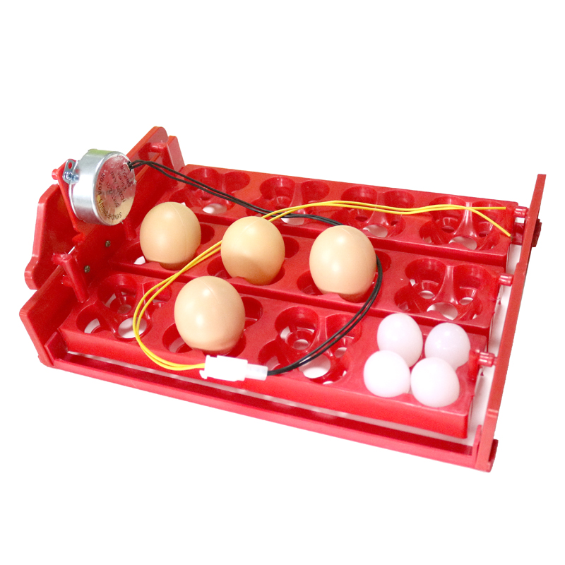Инкубатор Turn Eggs Tray 12 Eggs / 48 Birds Eggs 220V / 110V / 12V Chicken Bird Автоматический инкубатор DIY Инкубатор Аксессуары