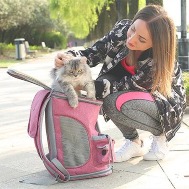 PUPISHE 2019 Luxury Oxford Pet Carrier Backpack For Dog Portable Travel Cats Animal Handbag Outdoor Shoulder Bags Yorkie 2