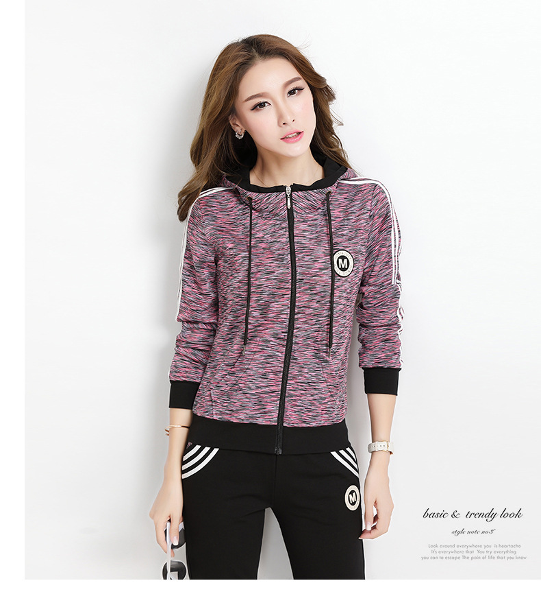 Popular Style Sportwear Hooded Long Sleeve Tops and Pants Tracksuit