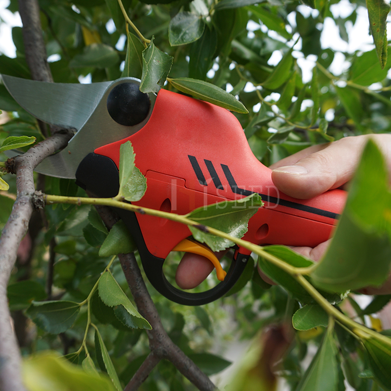 Geriausia vynuogynų ir šakų genėjimo žirklė (CE - Sodo įrankiai - Nuotrauka 2