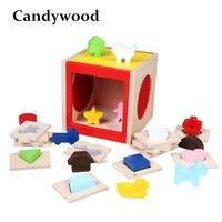 Candywood مربع الشكل فارز المخابرات المعرفي و مطابقة اللبنات خشبية مونتيسوري تربوية لعبة للأطفال
