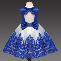 2019 Baby Girls Dress Hollow Out Embroidery Blue Red 1 2 Years Birthdays Outfit Girls Princess Costume for 1 to 5 Years 2L25A