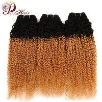 Pinshair Ombre Indian Haar Bundels 1B 27 Blonde Jerry Krul Weave Human Hair Extensions Ombre Kinky Krullend 3 Bundels Deal Niet Remy