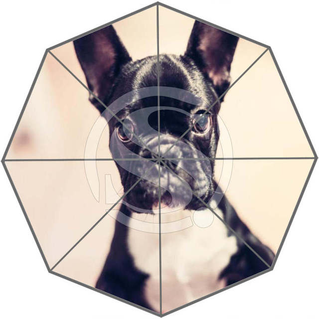 639fbcc0e99b US $23.99 |Free Shipping Custom Cute dog Best Nice Cool Design Portable  Fashion Stylish Useful Foldable Umbrella SQ0617=D78-in Umbrellas from Home  & ...