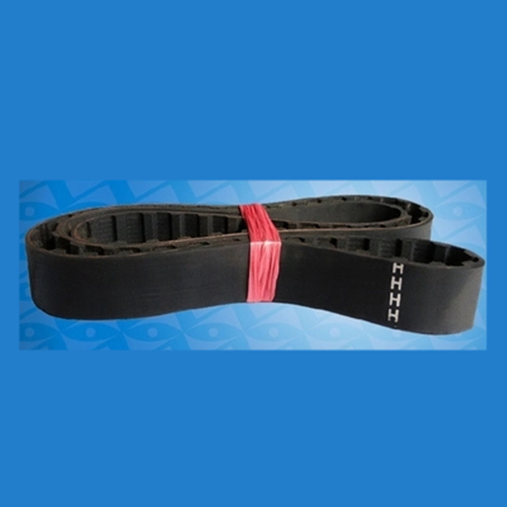 "10 5 20,25 mt Nurse Anti Roll 2/"" 50mm Nurses Stiff Elastic for Belts 1,2 3"