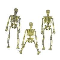 New Halloween Plastic Skull Skeleton Trumpet Skull Model Ornaments Props Simulation Human Decoration Skeleton Halloween for Home