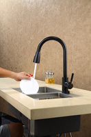 Free Ship Black Color Pull Out Kitchen Faucet Mixer Tap Single Spout Tap Swivel Pull Out