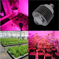 New arrival E40 base 30w/50w high power COB Chip Blue+Red full spectrum LED Plants grow light Hydroponics Flowering Lamp