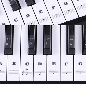 Transparent Piano Keyboard Sti