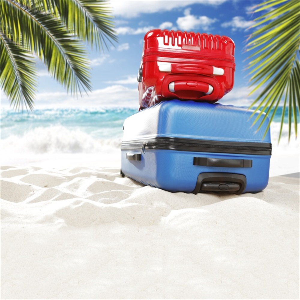 Laeacco Sea Beach Palm Tree Leaves Trolley Case Photography Backgrounds Customized Photographic Backdrops For Photo Studio