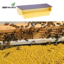 Multifunctional Plastic Pollen Collector Removable Ventilated Pollen Tray Farm Bee Honey Hive Pollen Collector Beekeeping Tools
