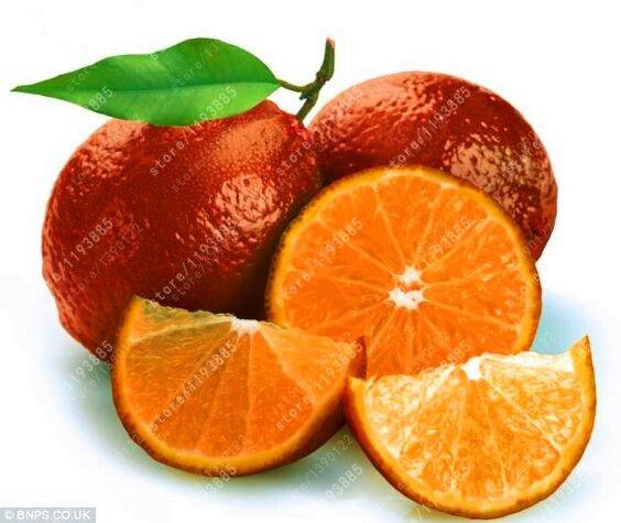 Buy 20pcs bag red lemon seeds organic for Buy lemon seeds online