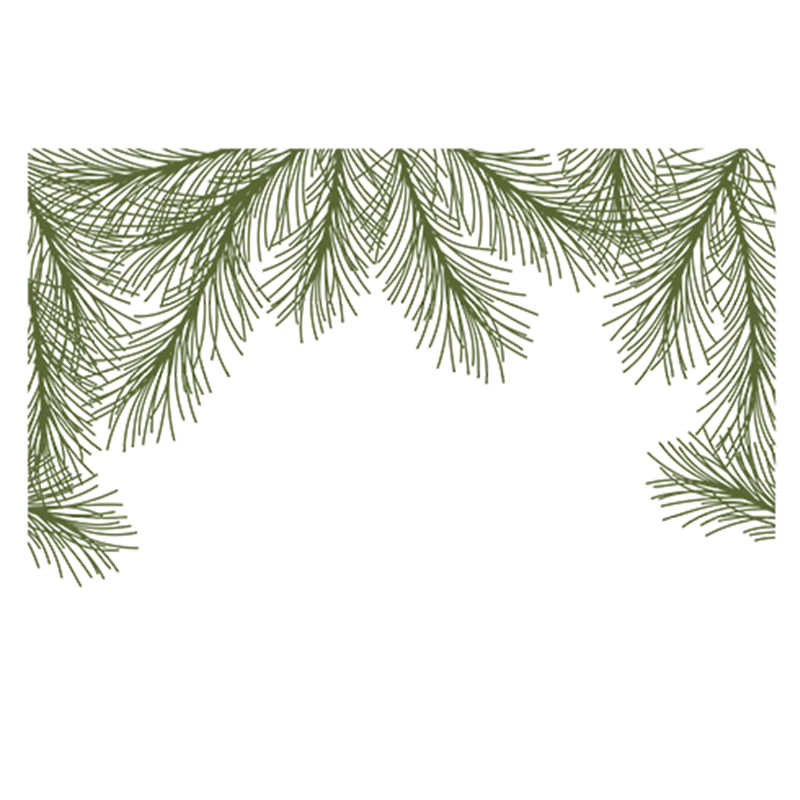 Holly Pine Boughs  Transparent Clear Silicone Stamp/Seal for DIY Scrapbooking/Photo Album Craft Decorative Clear Stamp 4x6IN