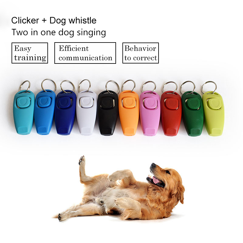 US $1 19 24% OFF|Hot Sale Combo pet dog Clicker Whistle Pet Trainer Click  Puppy dog training With Guide With Key Ring perro adiestramiento DA-in Dog