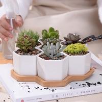 Modern Fashion Set of Decorative Geometry Hexagon White Ceramic Succulent Plant Pot Porcelain Flower Pot Zakka Home Decoration