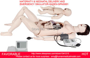 Human-Body-Model SIMULATOR MATERNAL AND Neonatal-Delivery Emergency-Simulator-Gasen-Gpm0001