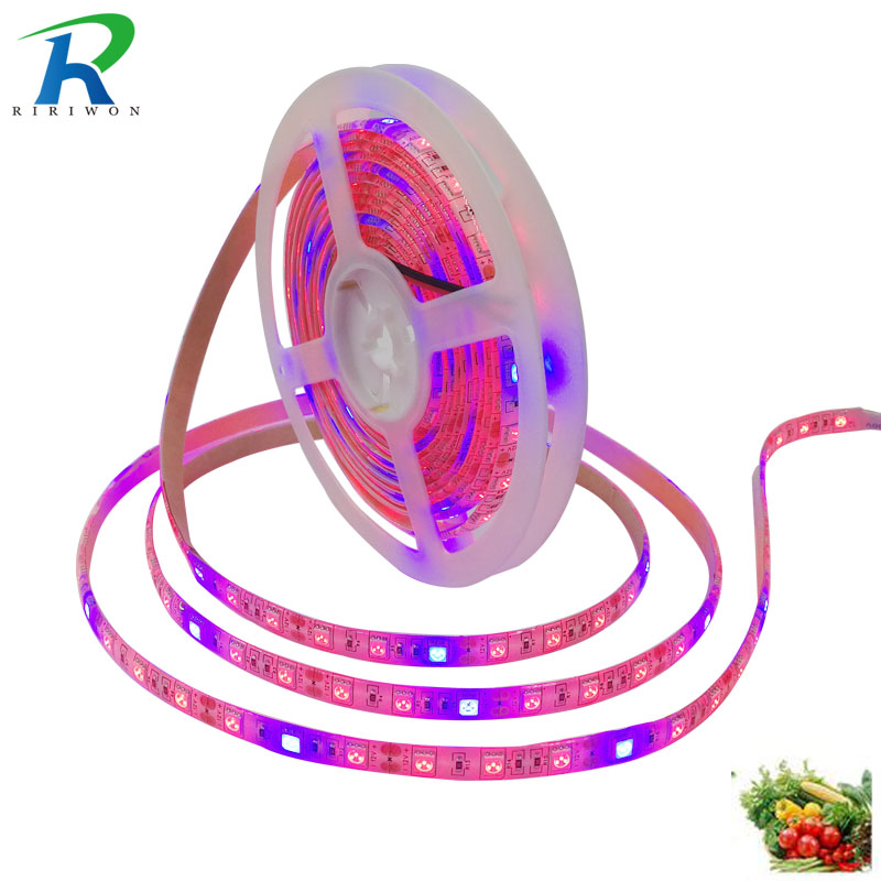 RiRi won 5m LED Plant grow Lamp strip grow light Waterproof 5050 60leds/m DC 12V SMD Hydroponic Systems spectrum Greenhouse