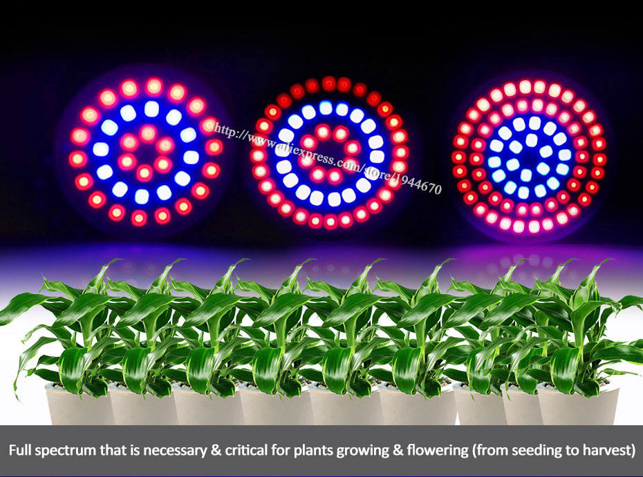 2.led lamp for plants