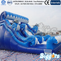 Dolphin Inflatable Ocean Wave Water Slide for Kids Playing