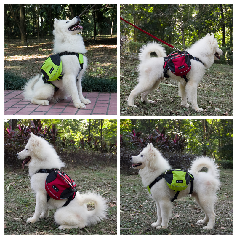 Tailup Polyester Pet Dog Saddlebags Pack Hound Travel Camping Hiking Backpack Saddle Bag For Small Medium Large Dogs Free Gift In Carriers From Home