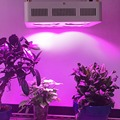 USA/DE Stock COB 800w Led Grow Light Full Spectrum with 2 years warranty 90 Degree Reflector Cup  Medical plant/Veg&Flower