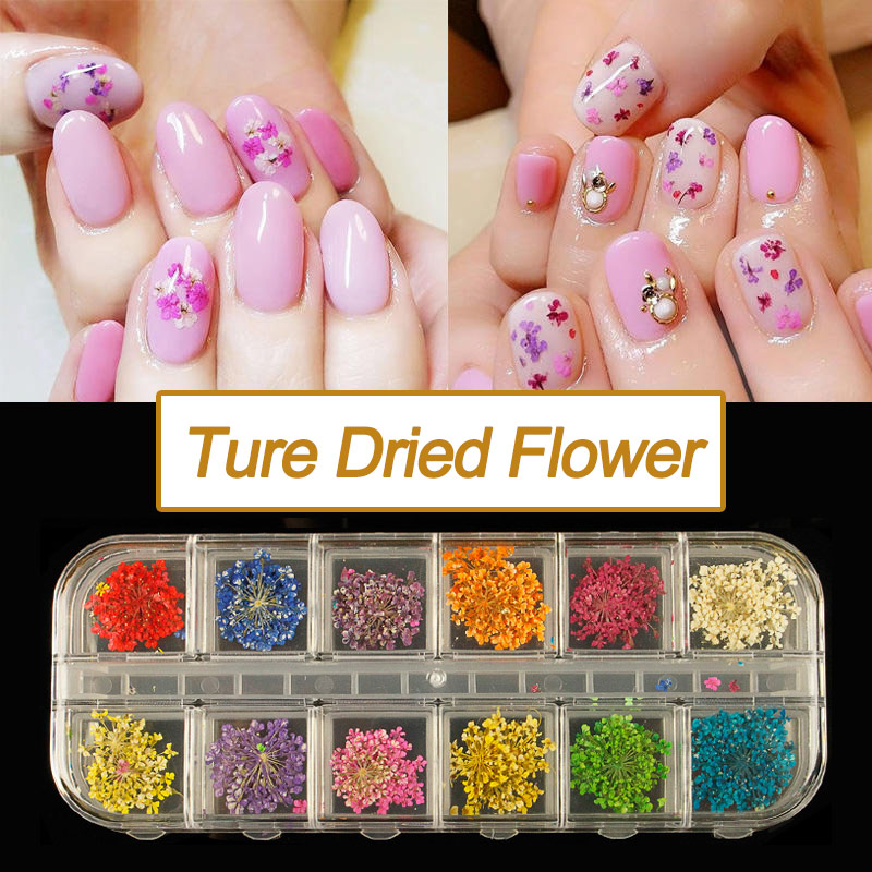 12 Colors Real Nail Dried Flowers Nail Art Decoration DIY Tips with ...