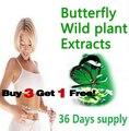 36 días de suministro mariposa producto botánico extractos de plantas silvestres 100% avanzada efectiva dieta geles adelgazantes quemador de grasa