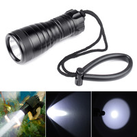 Brinyte 800 Lumen XM L2 LED Diving Flashlight Light Torch Lamp Waterproof Underwater 200m Diver Flash Light Support AA Battery