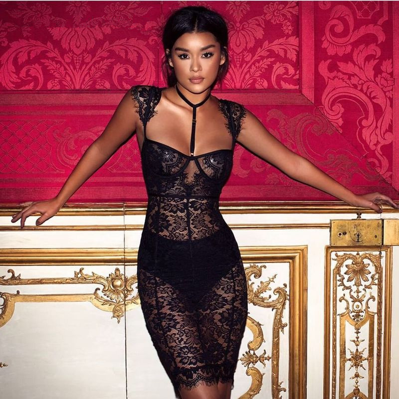 2017 Sexy Women Summer Black Lace See Through Choker Backless Celebrity Bodycon Short   Cocktail   Gown Vestidos Party   Dresses