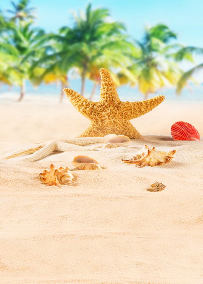 Star fish on sea beach photo backdrops thin vinyl backgrounds for photo studio photography backgrounds props photophone