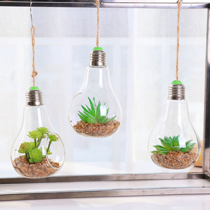 Bulb Shape Clear Transparent Hanging Glass Artificial Plant Succulents Bonsai Terrarium Container Diy Wedding Home Decoration Buy At The Price Of 4 10 In Aliexpress Com Imall Com