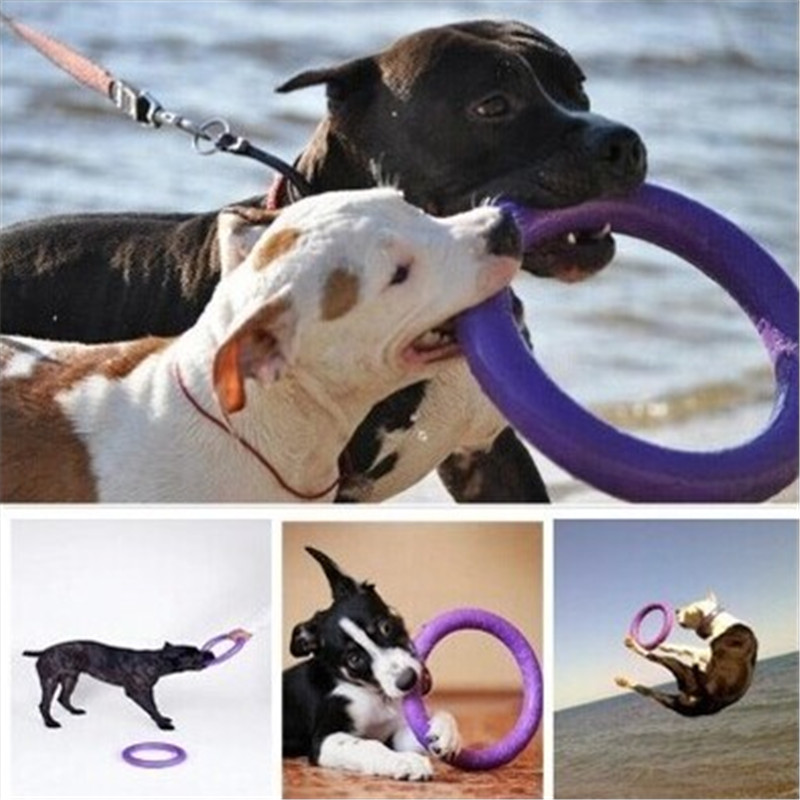 Plastic Pets Large Dog Toy Shop Good Play Oyuncaklar Fly Disc Game Mascotas Puppy Cat Pitbull Rubber Dog Toy For Tooth BBM49