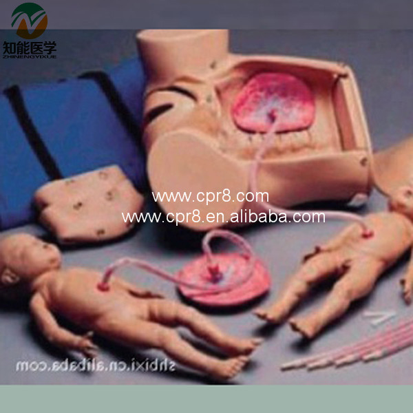 BIX-F52 Advanced Delivery(Childbirth) Mechanism Teaching Series Model G182 model of course of delivery delivery mechanism demonstration simulator delivery mechanism model
