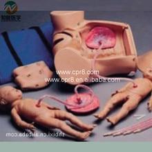 BIX-F52 Advanced Delivery(Childbirth) Mechanism Teaching Series Model  G182