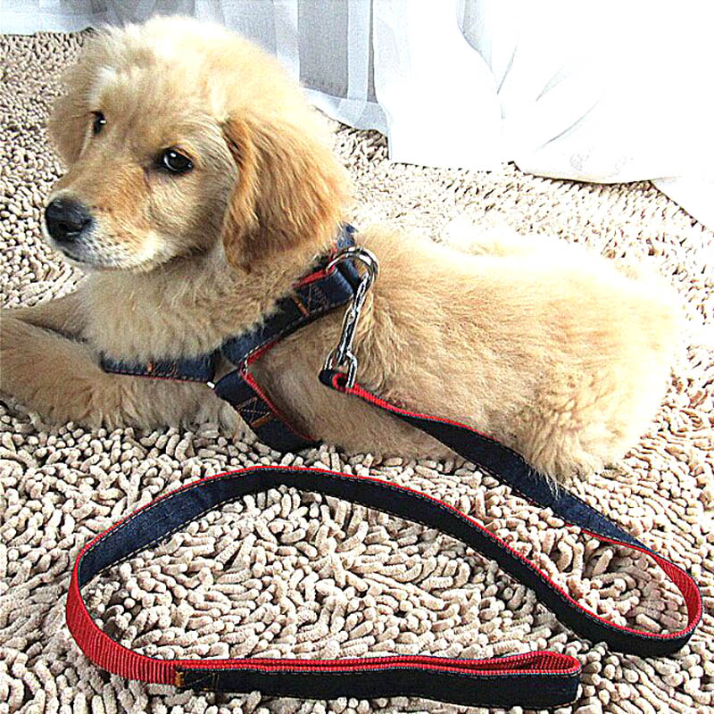 2017 New Arrival Hot Sales L XL Colorful Jean Denim Leash Harness Dog Collar Chain Cat rope belt adjustable collar dogs