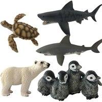 1 pc Engraçado Simulação de Animais Do Mar Do Oceano Azul Tubarão Baleia Baleia Assassina Turtle Aprendizagem Educacional Dom Brinquedos Modelo # E