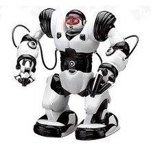 Big Size Remote Control font b Robot b font TT313 font b RC b font font