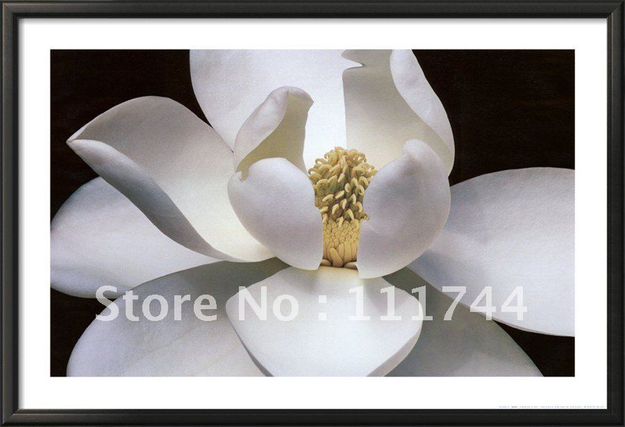 Canvas oil paintings flower Modern arts Magnolia High qualtiy 100%handmadeCanvas oil paintings flower Modern arts Magnolia High qualtiy 100%handmade