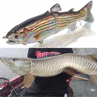 hunthouse Muskie Musky fishing pike lure laser 185mm 65g wobblers 2 Section Swimbait brand Fishing Lures Artificial Bait