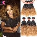 Mongolian Afro Kinky Human Hair Ombre Virgin Curly Hair 3 Bundles Ali Queen Curly Weave Human Hair Ombre Kinky Curly Virgin Hair