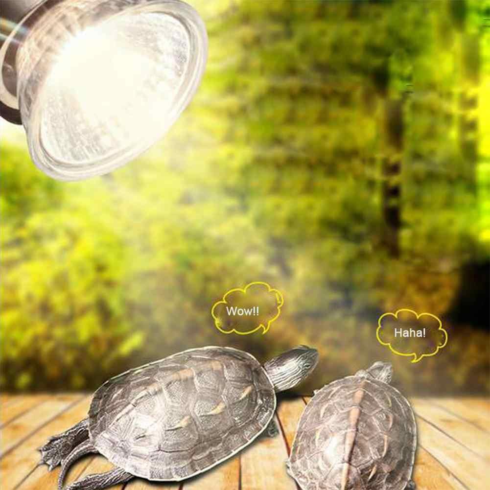 25/50/75 واط UVA + UVB 3.0 الزواحف المصباح الكهربي السلاحف الفرح الأشعة فوق البنفسجية مصابيح كهربائية مصباح تدفئة البرمائيات السحالي متحكم في درجة الحرارة