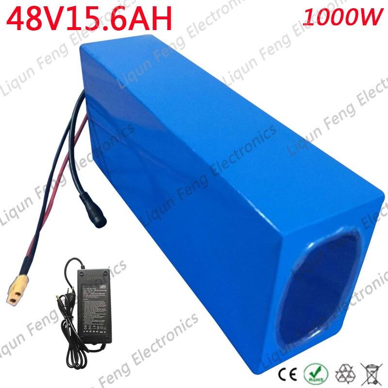 48V15.6AH-1000WW