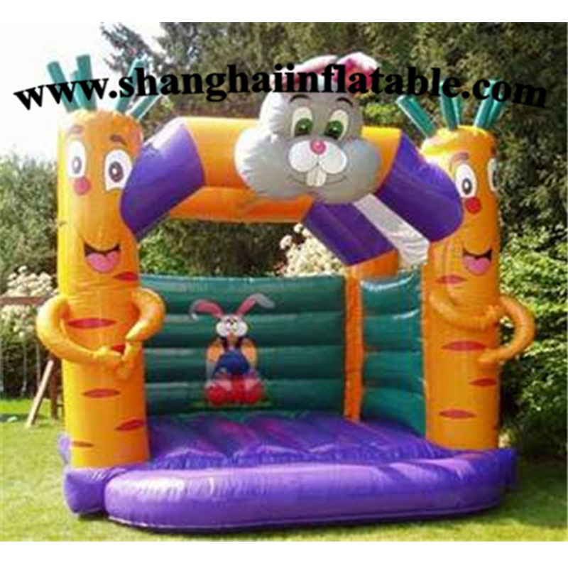 Parc d'attractions adapté aux besoins du client de terrain de jeu d'enfants de bâche de PVC avec le jouet, équipement d'intérieur utilisé de terrain de jeu à vendre