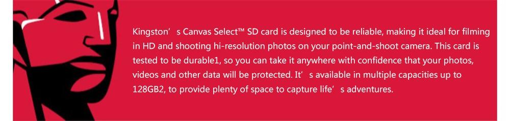 Kingston SD Card 128GB 64GB 32GB 16GB memory card Class10 tarjeta de memoria SDHC SDXC UHS-I HD C10 video carte sd For Camera (2)