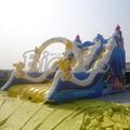 PVC Atlantic Kids Inflatable Slides Rentals Backyard Inflatable Dry Slides