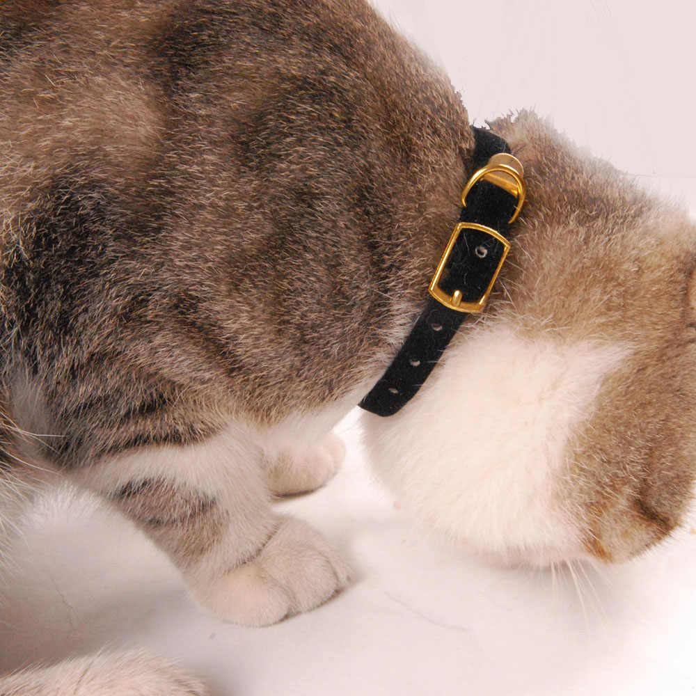 Cat Collare per Cani di Piccola Taglia Cuccioli Che Si Affolla Gatto Cuccioli Collare Dell'animale Domestico Forniture di Prodotto Regolabile per il Gattino Pet Gatti Collari YS0032