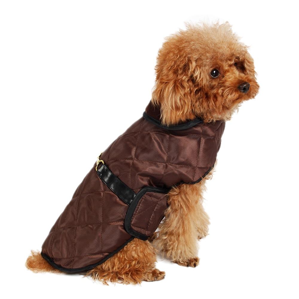 Black dog clothing store