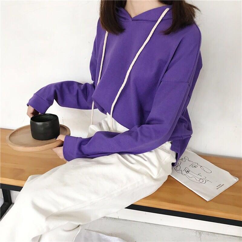 2018 nouveau coton confortable sweat à manches longues BY-10 T - 4