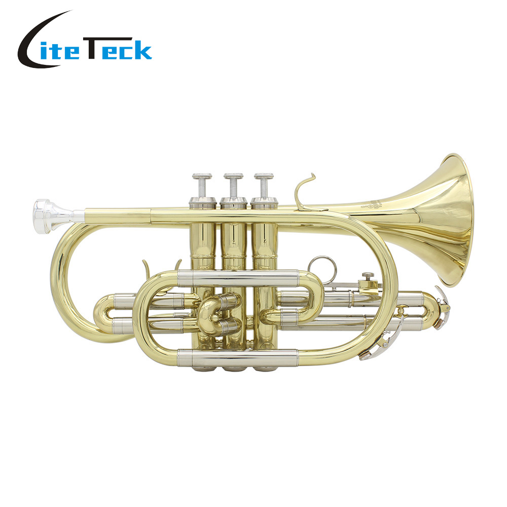 Professional Bb Flat Cornet Brass Instrument With Carrying Case Gloves Cleaning Cloth Brushes Excellent Workmanship